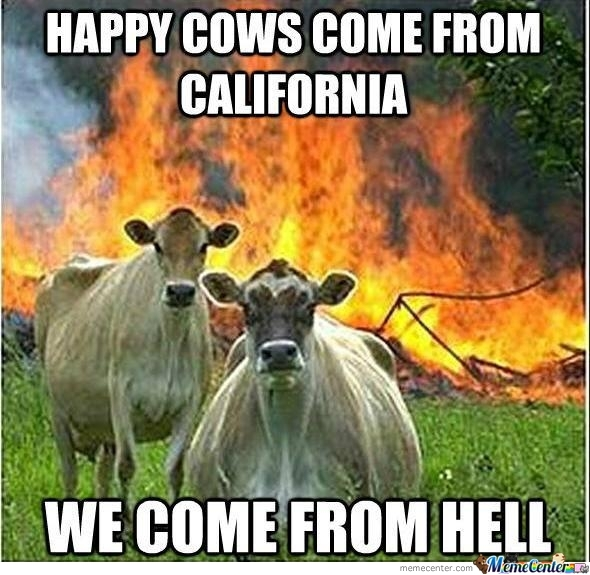 Evil Cow The Return
