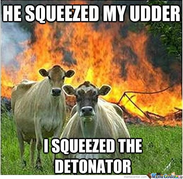 Evil Cow... They Are Really Evil