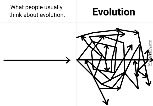Evolution Is Complicated Y'All