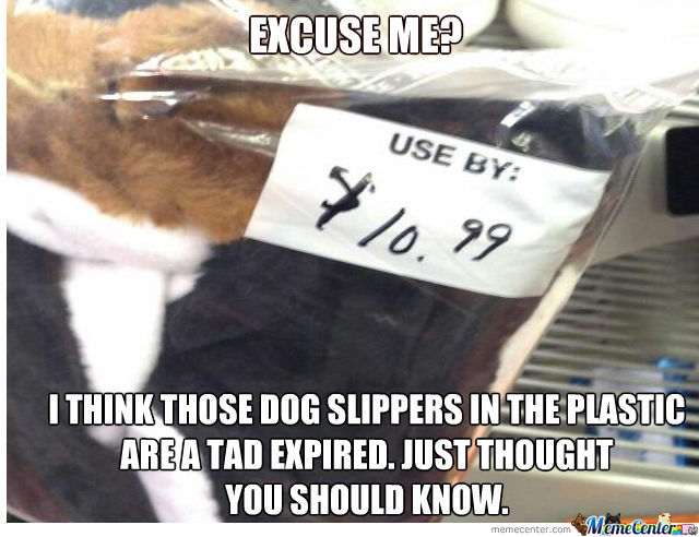 Expired Dog Slippers