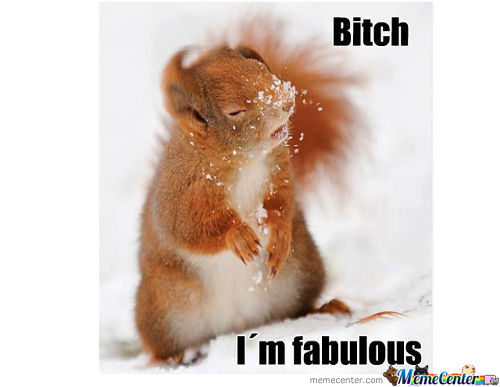 Fabulous Squirrel