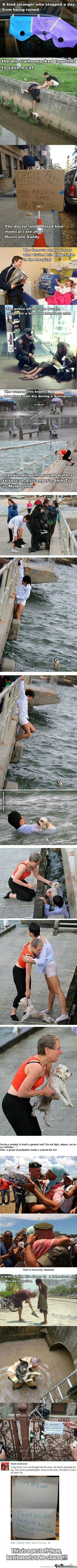 Faith In Humanity Has Been Restored!