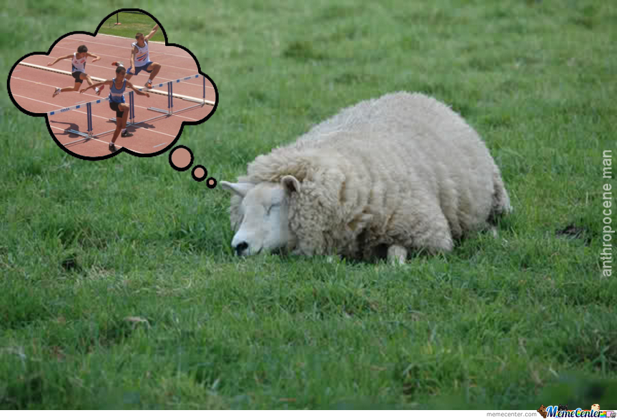 Fall Asleep Level Sheep