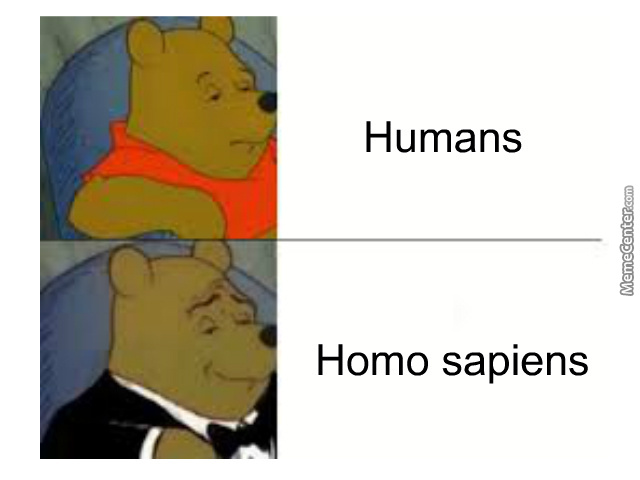 Fancy Winnie The Pooh Meme Because, Why Not?