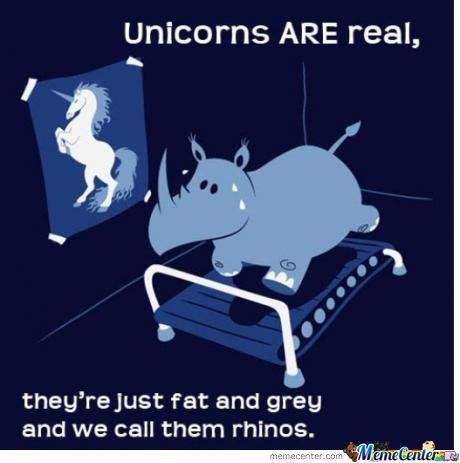 Fat Unicorns