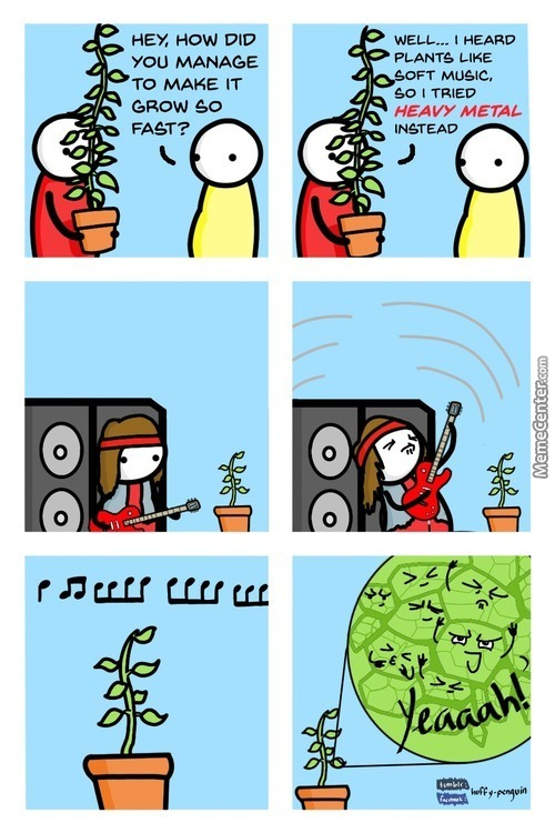 Fear Of The Plant