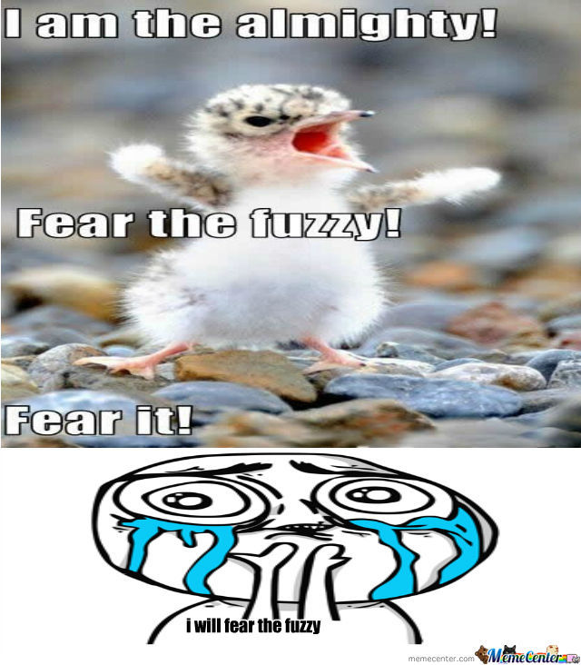 Fear The Fuzzy By Tyrico121 Meme Center