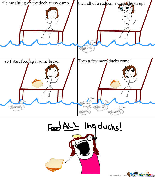 Feed All The Ducks!