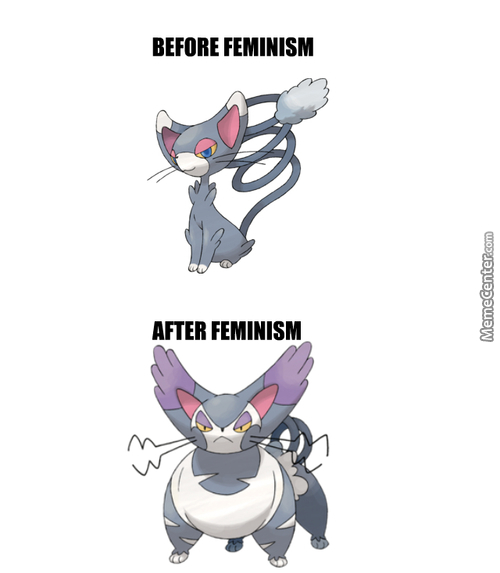 Feminism - Not Even Once