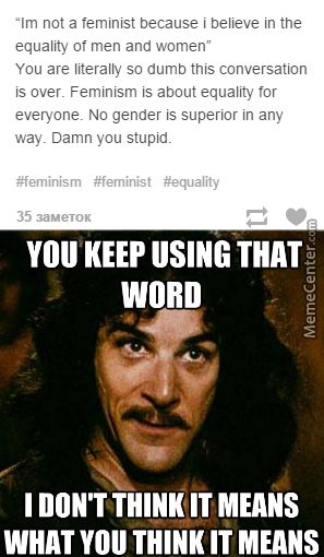 Feminists Calling Others Stupid? That's Already Funny