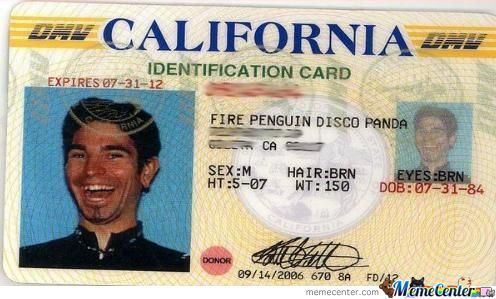 Fire Penguin Disco Panda.