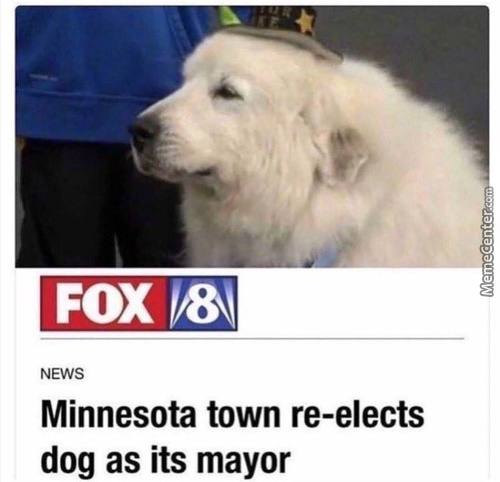 First Non-Shitty Mayor In The World
