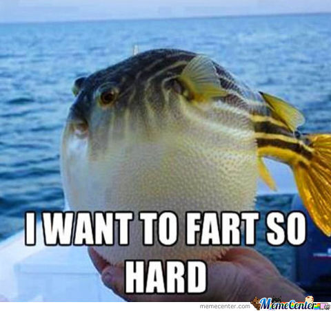 Fish Wants To Fart
