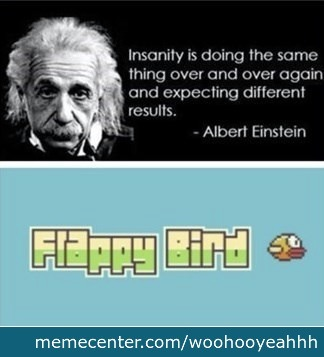 Flappy Insanity
