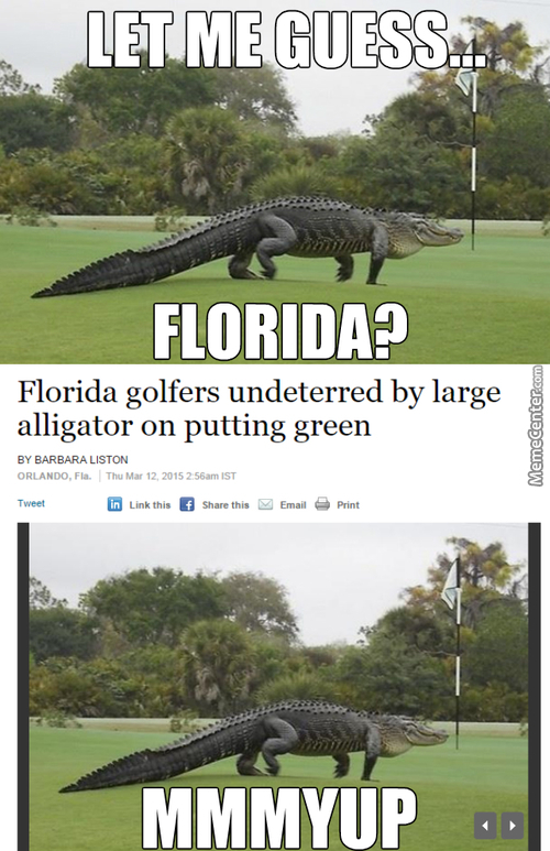 Florida Man, The Man Whos Weakness Is Snow And A Good Sense Of Decency.
