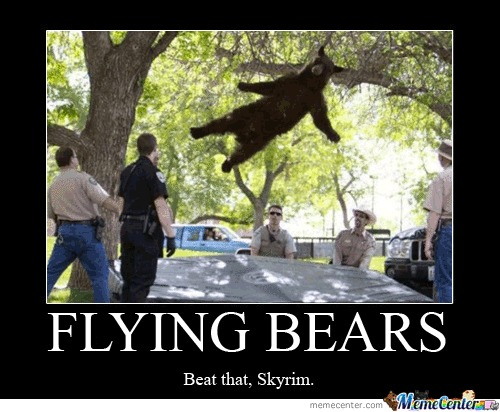 Flying Bears