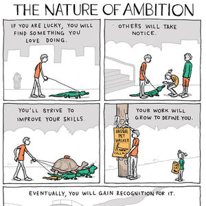 what is your ambition and why