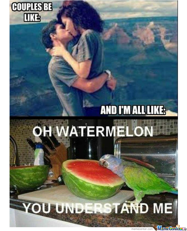 Forever Alone Level:in Love With Watermelon