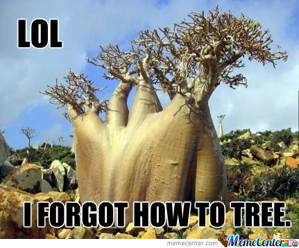 Forgot How To Tree