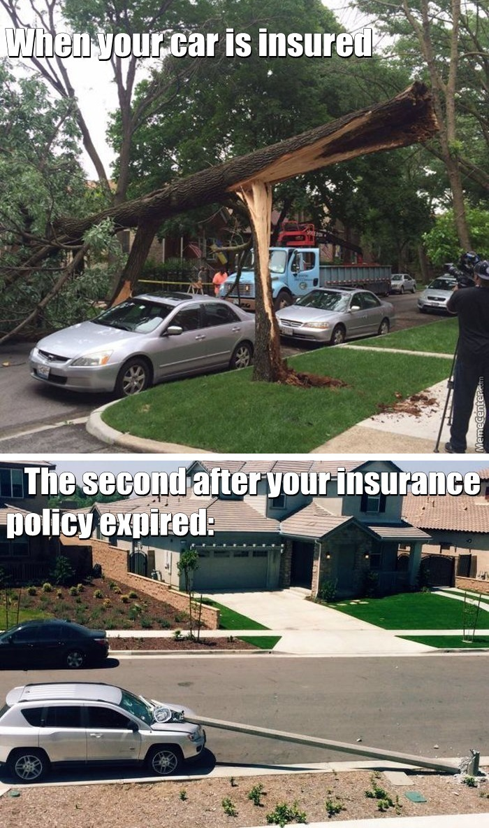 Insurance Memes Best Collection Of Funny Insurance Pictures