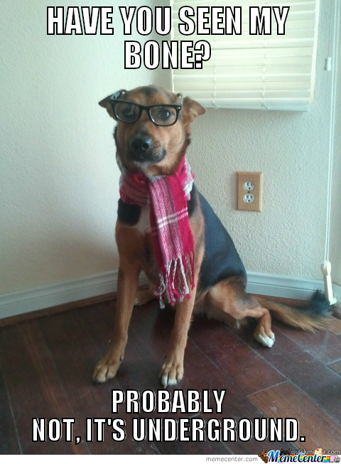Freaking Hate Hipster Dogs