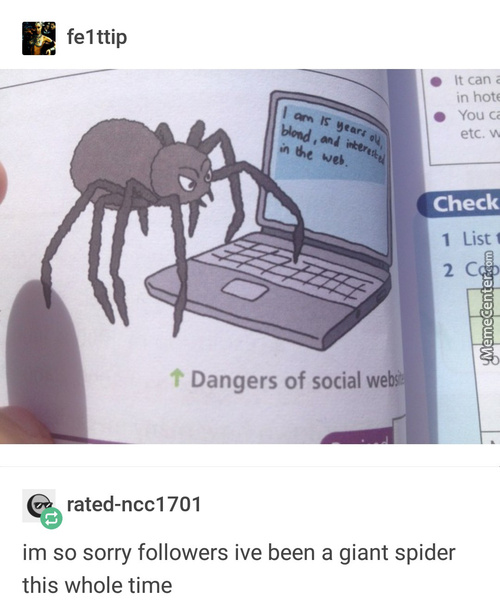 Freaking Spiders On The Web
