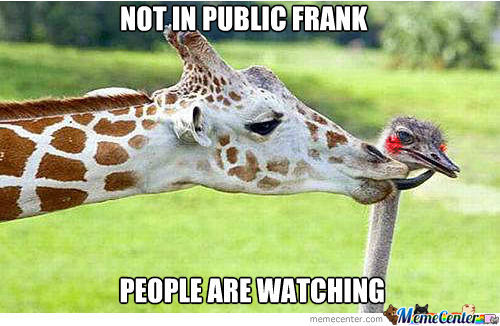 french kiss_o_1168977 french kiss memes best collection of funny french kiss pictures