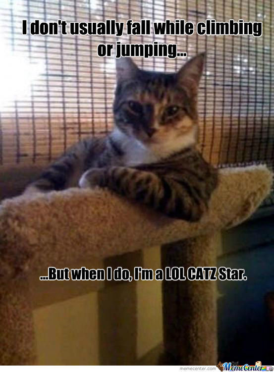 Funny Cat Is Funny.