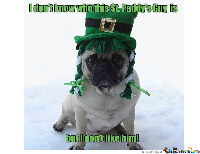 Funny Memes For St Patricks Day : Funny sad pug st patrick s day by dapuglet meme center