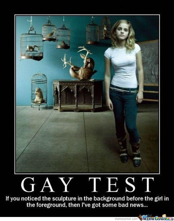 GAY PHOTO TEST
