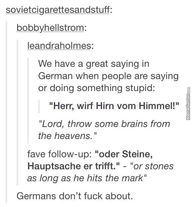 german is a beautiful language_o_4704103 german memes best collection of funny german pictures,German Memes