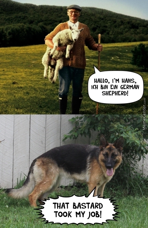 Good Morning Madam In German : German memes best collection of funny pictures