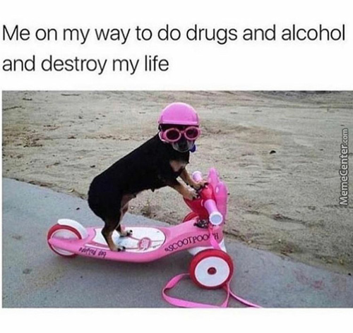 Get On Niggie We Going Shopping For Alcohol
