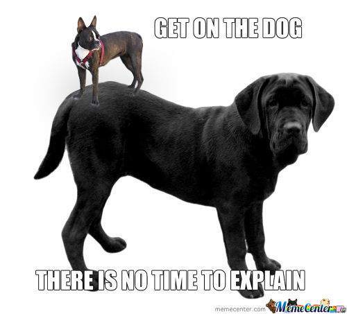 Get On The Dog