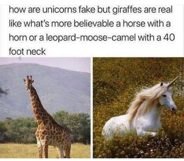 Girrafes Are Fake , Unicorns Are Real