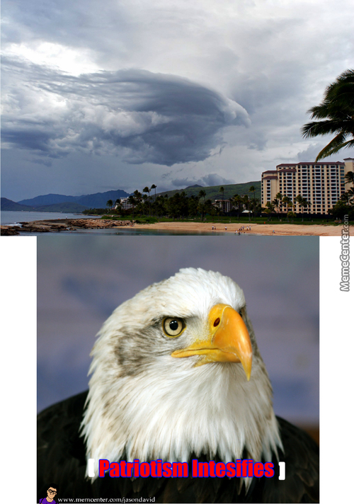 Glorious Murican Eagle
