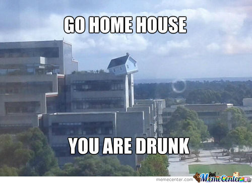 Go Home, House , You Are Drunk