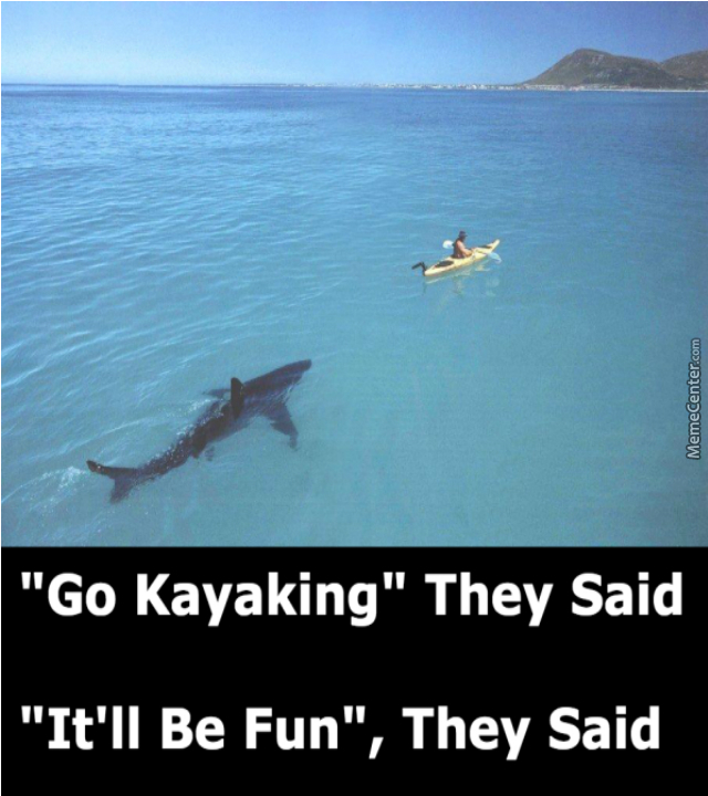 Go Kayaking They Said It Will Be Fun They Said