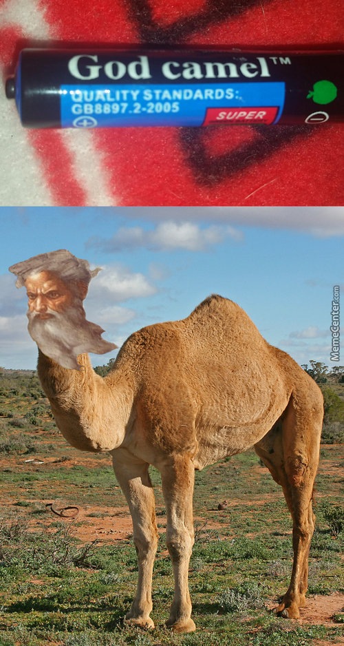 God And Camel Should Never Be In The Same Sentence, What Have I Created?