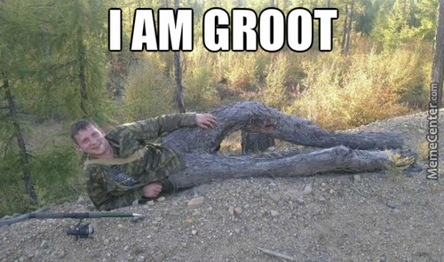 God Damn It, Groot!