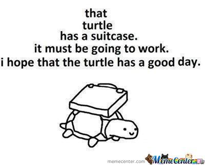 Good For That Turtle.