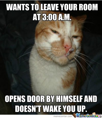 Good Guy Greg's Cat