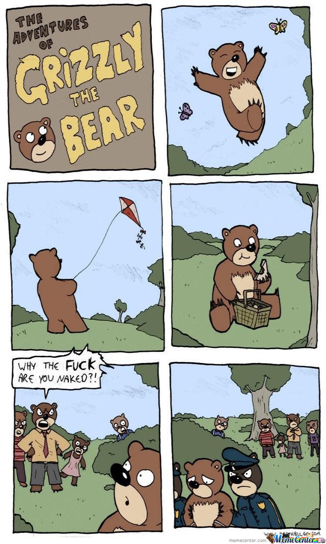 Grizzly The Bear