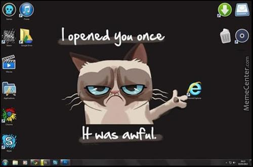 Grump Cat Opinion About Ie