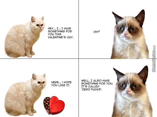 Grumpy Cat Valentine S Day Gift By Cosmicmaiden Meme Center