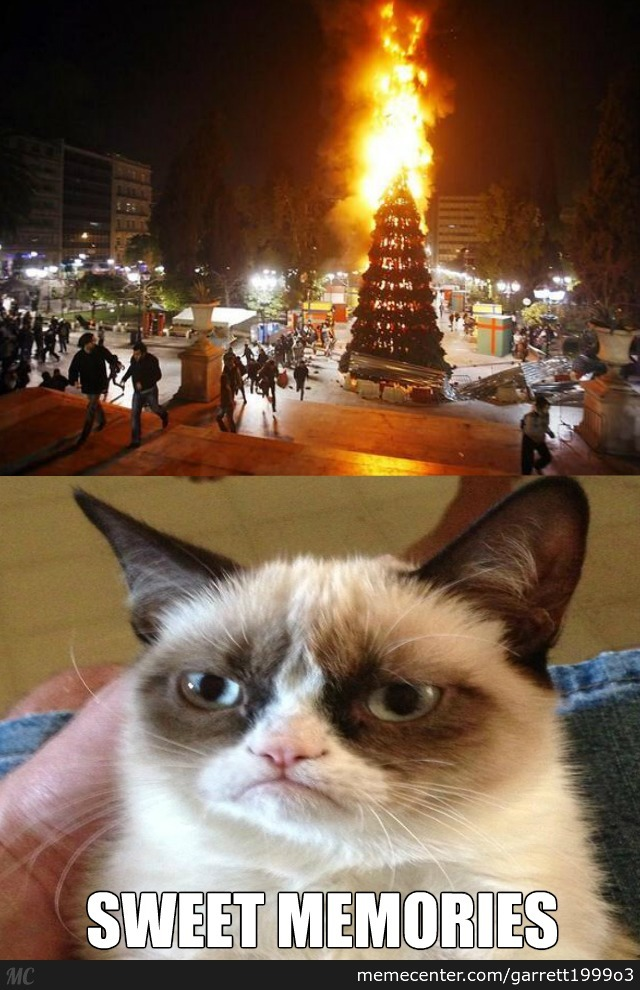 Funny Grumpy Cat Christmas Memes.Grumpy Cat S Favorite Christmas Tradition By Garrett1999o3