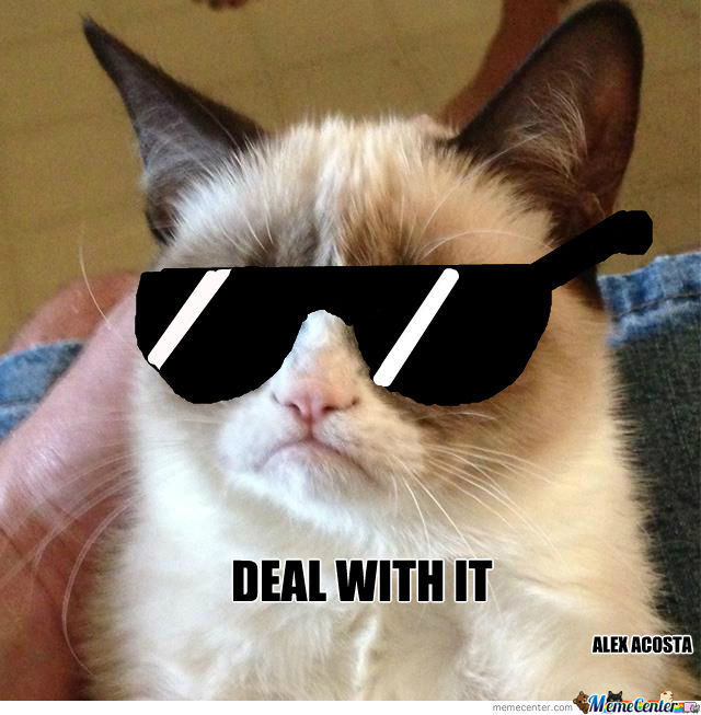 Grumpy Cat Deal With It