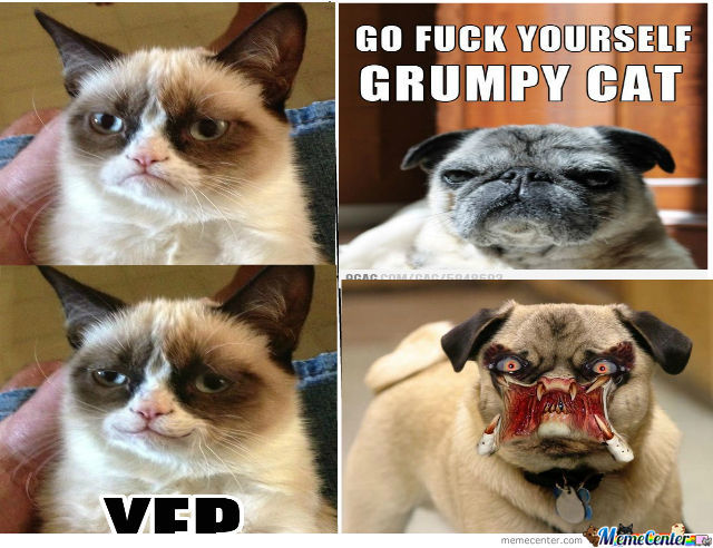 Funny Meme Smiley : Grumpy cat does smile by suzanne.cottrell.3 meme center