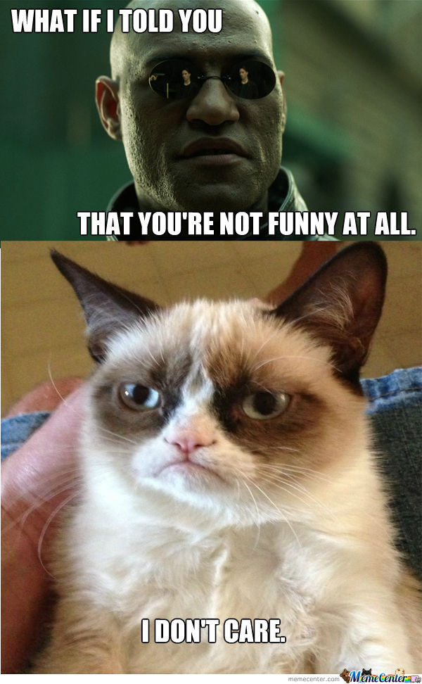 Cat Likes To Watch Meme