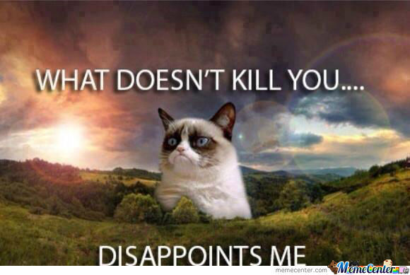 Grumpy Cat ... I See What You Did There